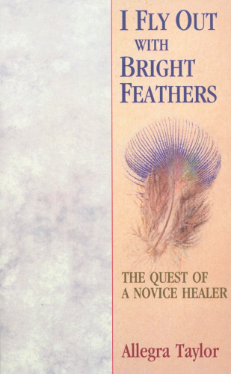 I Fly Out With Bright Feathers - The Quest of a Novice Healer