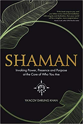 Shaman. Invoking Power, Presence and Purpose at the Core of Who You Are